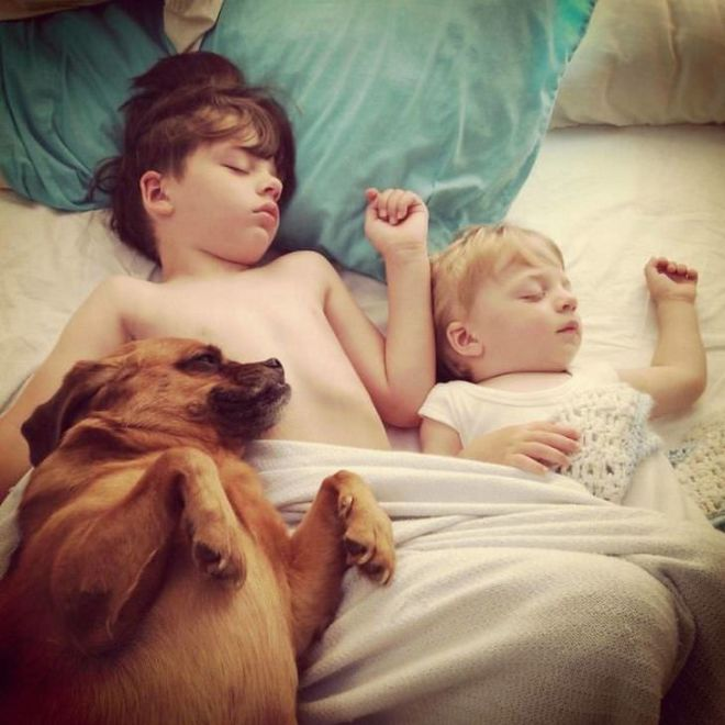 20 Adorable Kids Napping With Ther Dogs